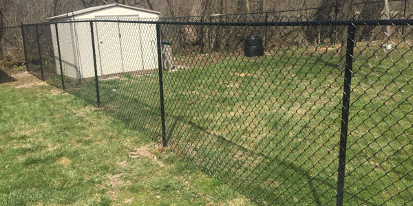 chain-link-pet-fence